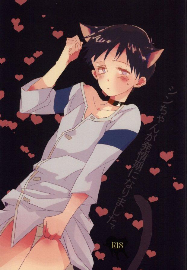 【エヴァンゲリオンBL漫画】カヲル×シンジ☆シンちゃんが発情期になりました。※18禁【ボーイズラブ同人誌】
