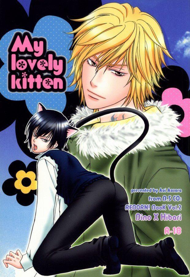 【リボーンBL同人誌】ディーノ×雲雀☆My lovely kitten【家庭教師ヒットマンREBORN!】