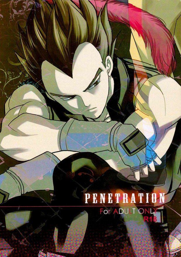 【ドラゴンボールBL】PENETRATION「カカロット×ベジータ」【ボーイズラブ同人誌】