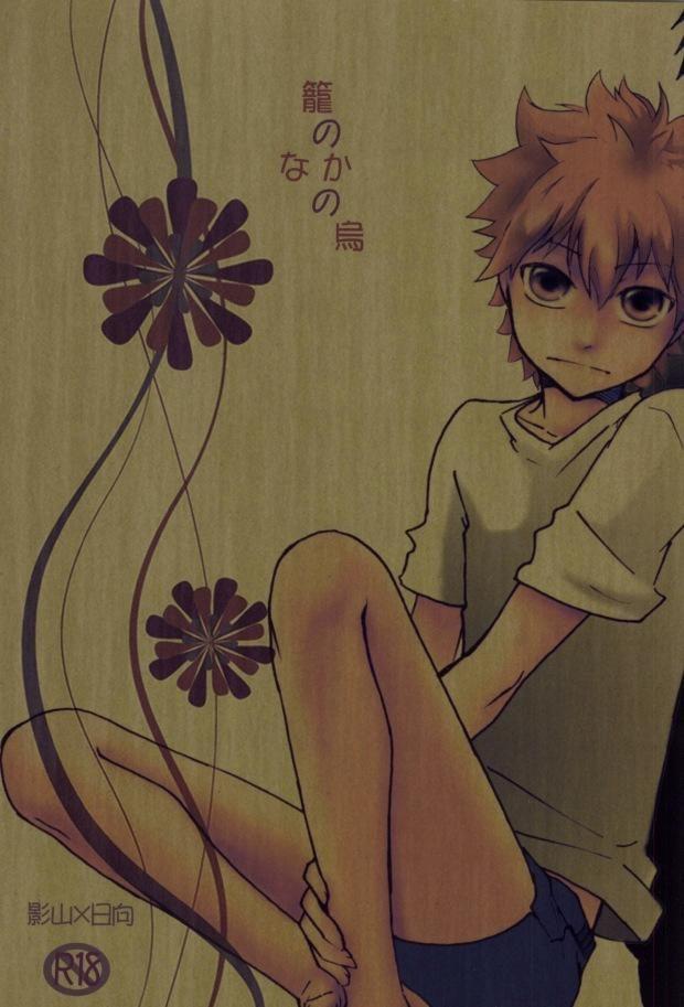 【HQボーイズラブ漫画】影山×日向「籠のなかの鳥」※BLエロ同人誌【ハイキュー!!】