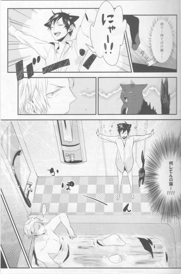 【デュラララ‼ エロ同人】突然猫と中身が入れ替わってしまった臨也が静雄とセックスする!【無料 エロ漫画】 (14)