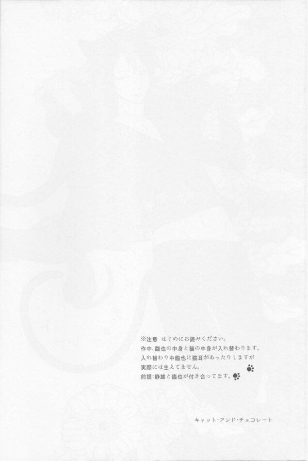 【デュラララ‼ エロ同人】突然猫と中身が入れ替わってしまった臨也が静雄とセックスする!【無料 エロ漫画】 (3)